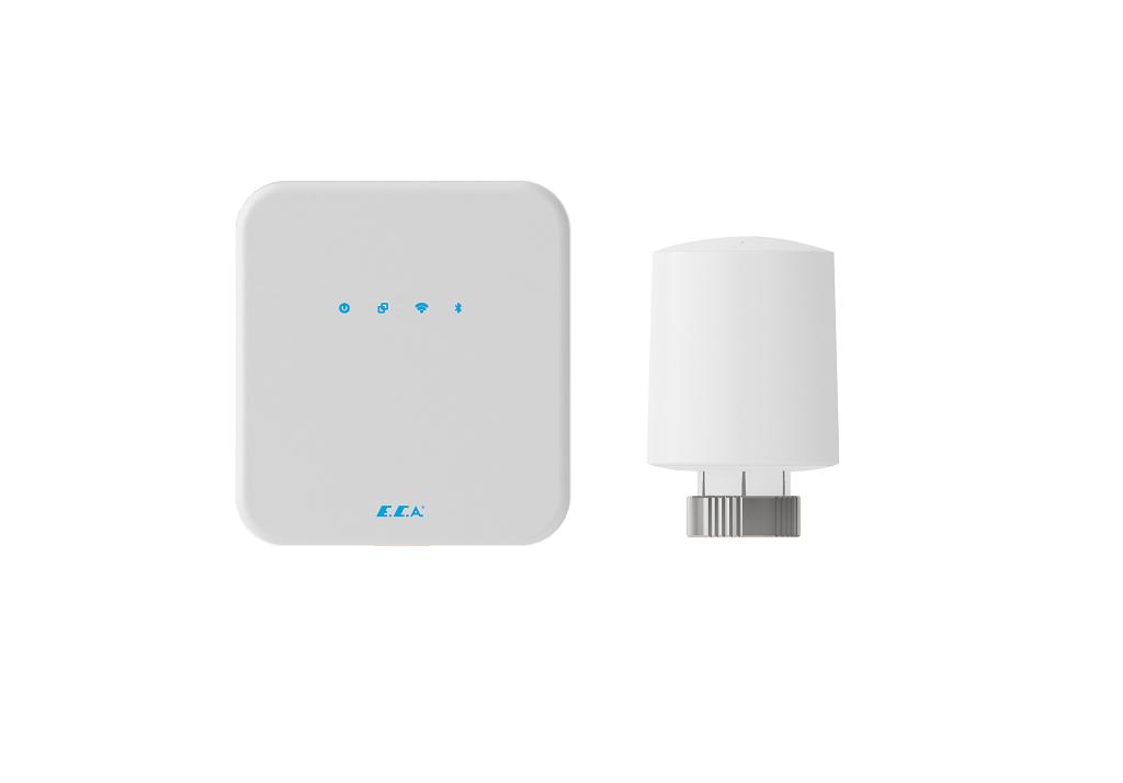 Internet Gateway + E-TRV + Connection Devices